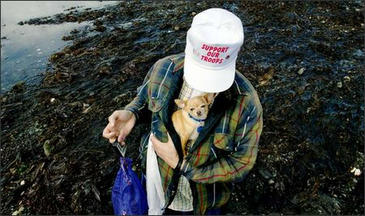 Roger Chapman from Tacoma and his chihuahua Bingsu weighing a sack of seaweed harvested during a low tide at Fort Flagler State Park.