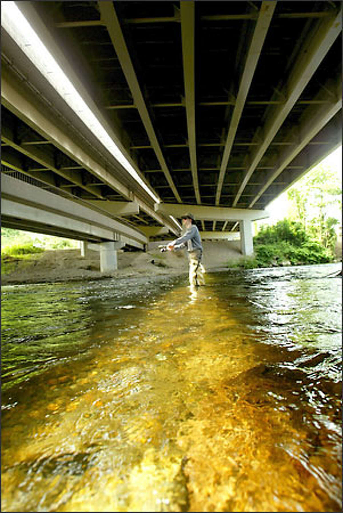 Morning sunlight pours through the gap between northbound and southbound bridges of Interstate 405 crossing the Cedar River as Jesse Piedfort, 20, of Renton fishes for trout yesterday.