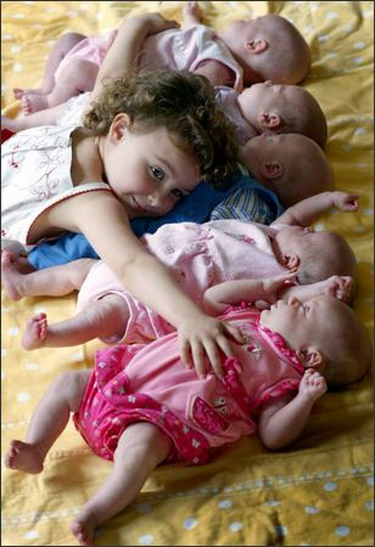 Lilli Stevenson, 3, tries to hug all of her new siblings at once at their home in Poulsbo. They're the first recorded set of quintuplets born in Western Washington. From the top: Belle, Scarlett, Weston, Camilee and Aniston were born March 30. Lilli is a very involved big sister.