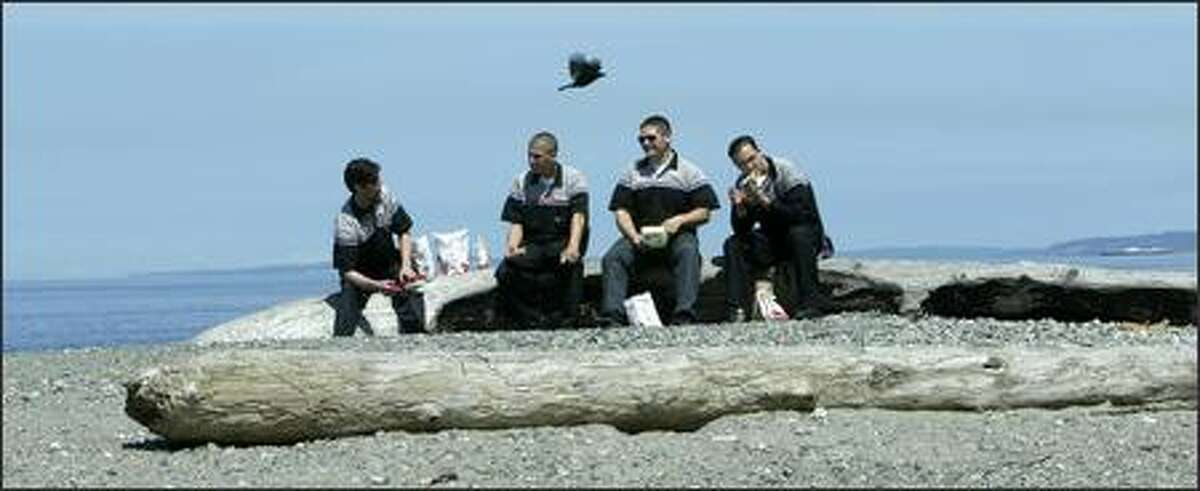 """It's lunchtime for student technicians Steve Hauch, Todd Blaine, Jonny Edwards and Adam Lazerte, who take their break Tuesday on a log at Carkeek Park in Seattle. The four are apprentices in the General Motors Automotive Service Educational Program at Shoreline Community College. """"We are the Navy SEALs of GM mechanics,"""" Haunch said of the intensive two-year training program."""