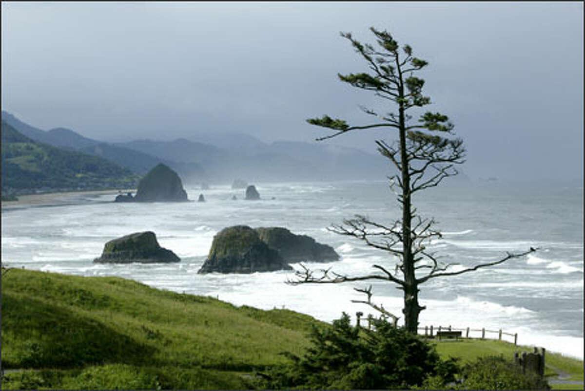 The rugged Oregon coast looking north toward Lincoln City.