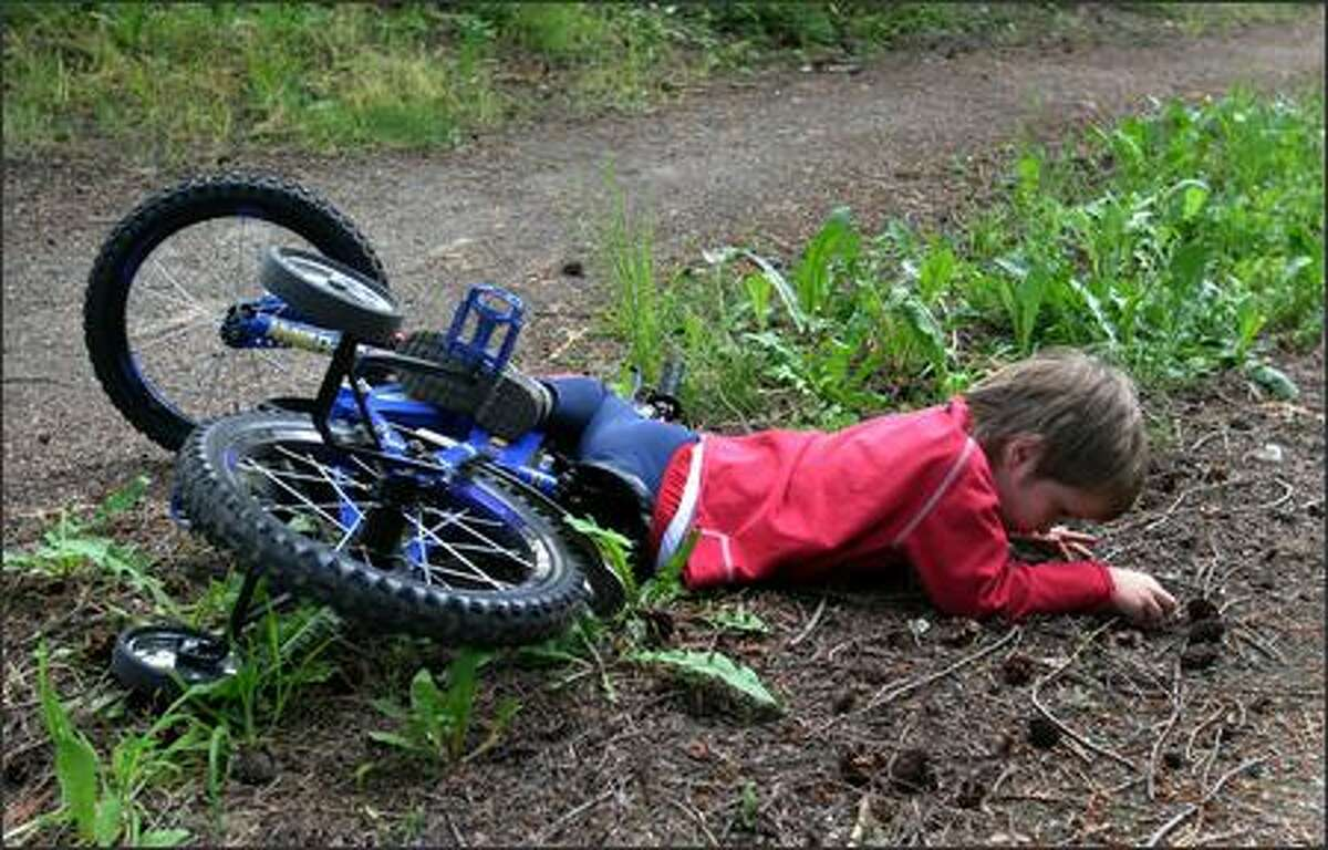 Cole William Douglas, 4, watches some bugs while he waits for his family after his shoelace became tangled in his bike chain and he fell along the Discovery Trail near Sequim.