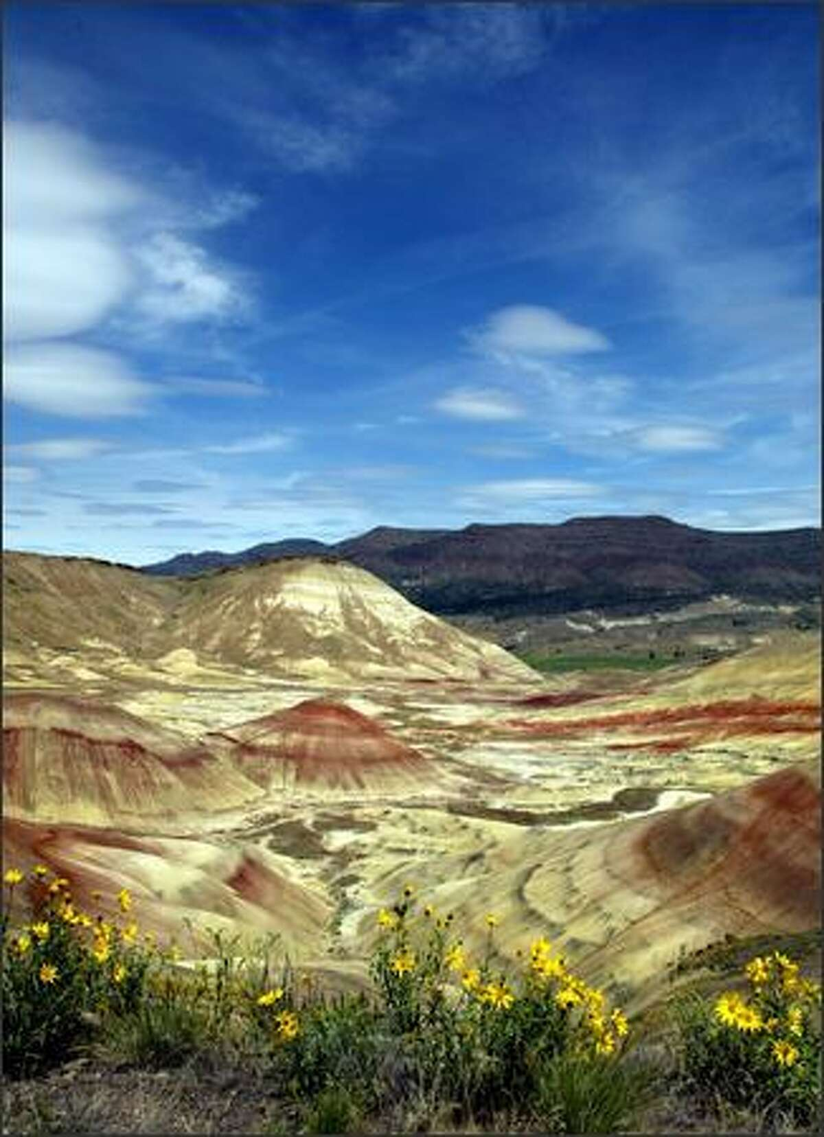 A view of the Painted Hills, foreground, with Carrol Rim in the center and the Sutton Mountains in the background.