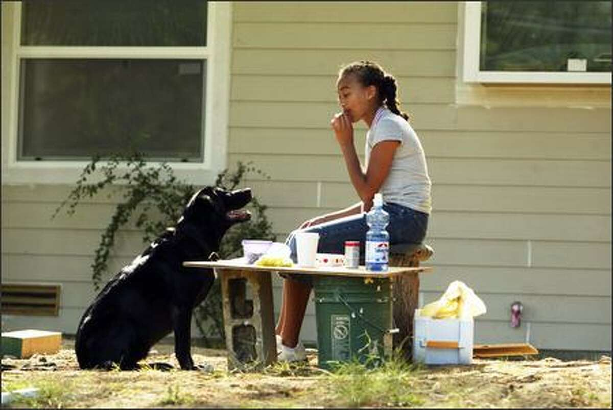 Jasmin Royal, 13, nibbles on the lunch she took to her father's work site Wednesday in the 15000 block of 27th Avenue Northwest as her dog, Amythest, keeps a close watch for a morsel or two. Jasmin also took a lunch for her father, Adrian Royal, and she was waiting for him to finish talking with another contractor.