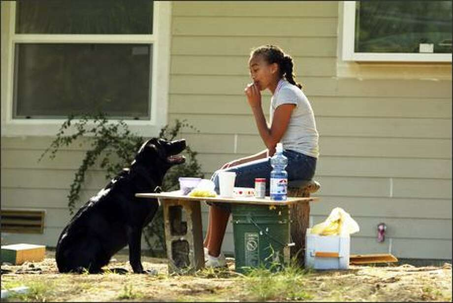 Jasmin Royal, 13, nibbles on the lunch she took to her father's work site Wednesday in the 15000 block of 27th Avenue Northwest as her dog, Amythest, keeps a close watch for a morsel or two. Jasmin also took a lunch for her father, Adrian Royal, and she was waiting for him to finish talking with another contractor. Photo: Grant M. Haller, Seattle Post-Intelligencer / Seattle Post-Intelligencer