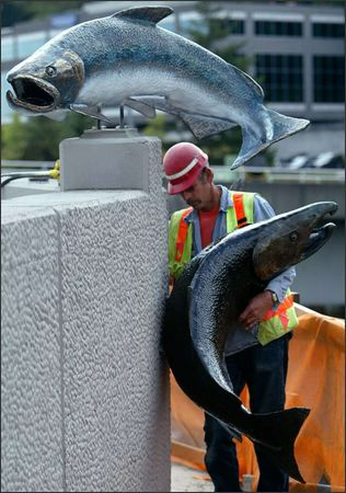 Foreman Chuck Laney checks the mounting of one of the fish he and Wayne Rengen installed on the wall of Sound Transit's Eastgate HOV access ramps at I-90 and 142nd Avenue Southeast. Alex Young's bronze