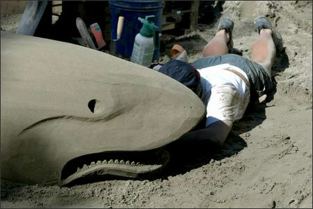 """Sand artist Ed Mah of Seattle works on the teeth of his great white sand shark. Mah is one of the artists with the Orbital Sanders team working on two sculptures for the SummerStop beach festival at Westlake Park downtown. Festivities begin tomorrow from 11:30 a.m. to 4:30 p.m., and include live music and dancing with the cast of """"Hairspray."""""""