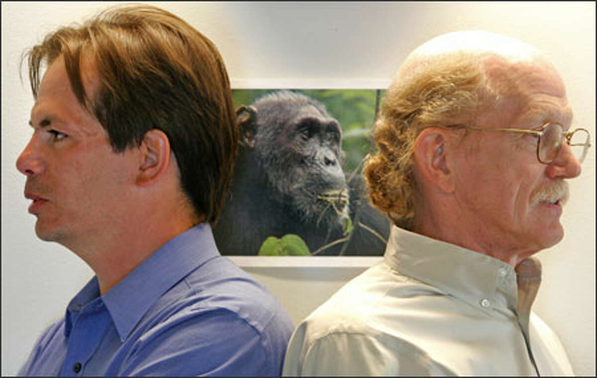 UW researchers Evan Eichler, left, and Robert Waterson co-authored a new paper analyzing the chimpanzee genome. The photo in the background depicts Port, a chimpanzee at the Gombe National Park in Tanzania.