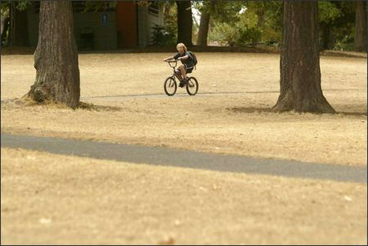 Effects of a very dry summer can be seen on local lawns. The grass isn't greener in Ballard, where Taylor Anderson rode his bike home on Wednesday.