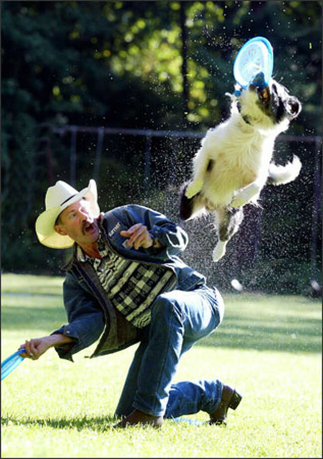 Ray Calhoun of Madrona works out with his border collie mix, Cordell. Calhoun, Cordell and Calhoun's other dog, Cowboy, are all headed to the world canine disc championships in Atlanta this weekend. (Editor's Note: Calhoun was incorrectly identified in the original version of this caption.) Photo: Paul Joseph Brown, Seattle Post-Intelligencer / Seattle Post-Intelligencer