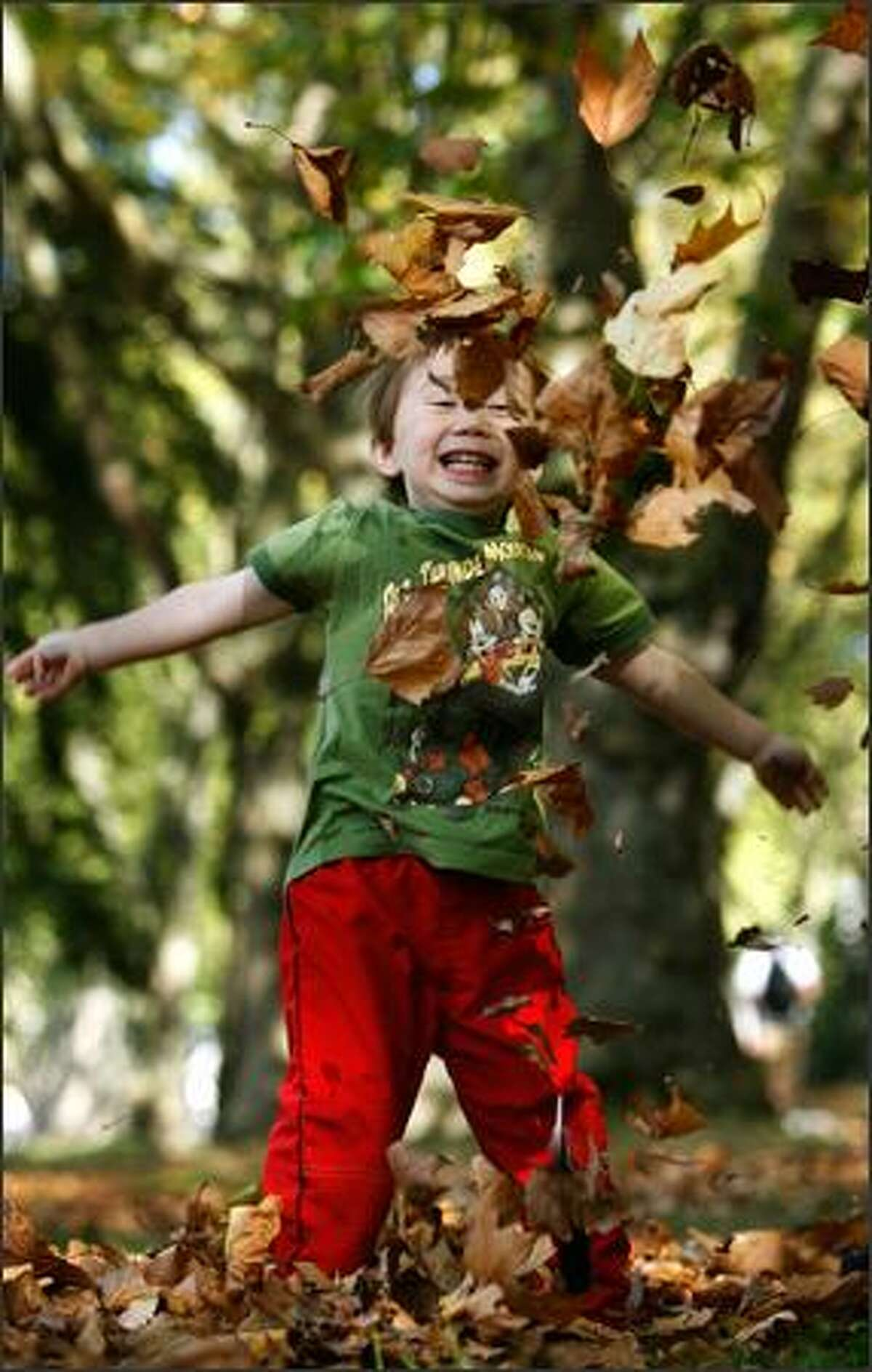 Tomoe Millette, 3 1/2, delights in tossing leaves in the air while enjoying a pleasant fall day as he plays on the University of Washington campus. Tomoe was with his mother, Yumiko Millette of Seattle, who was between classes Monday.