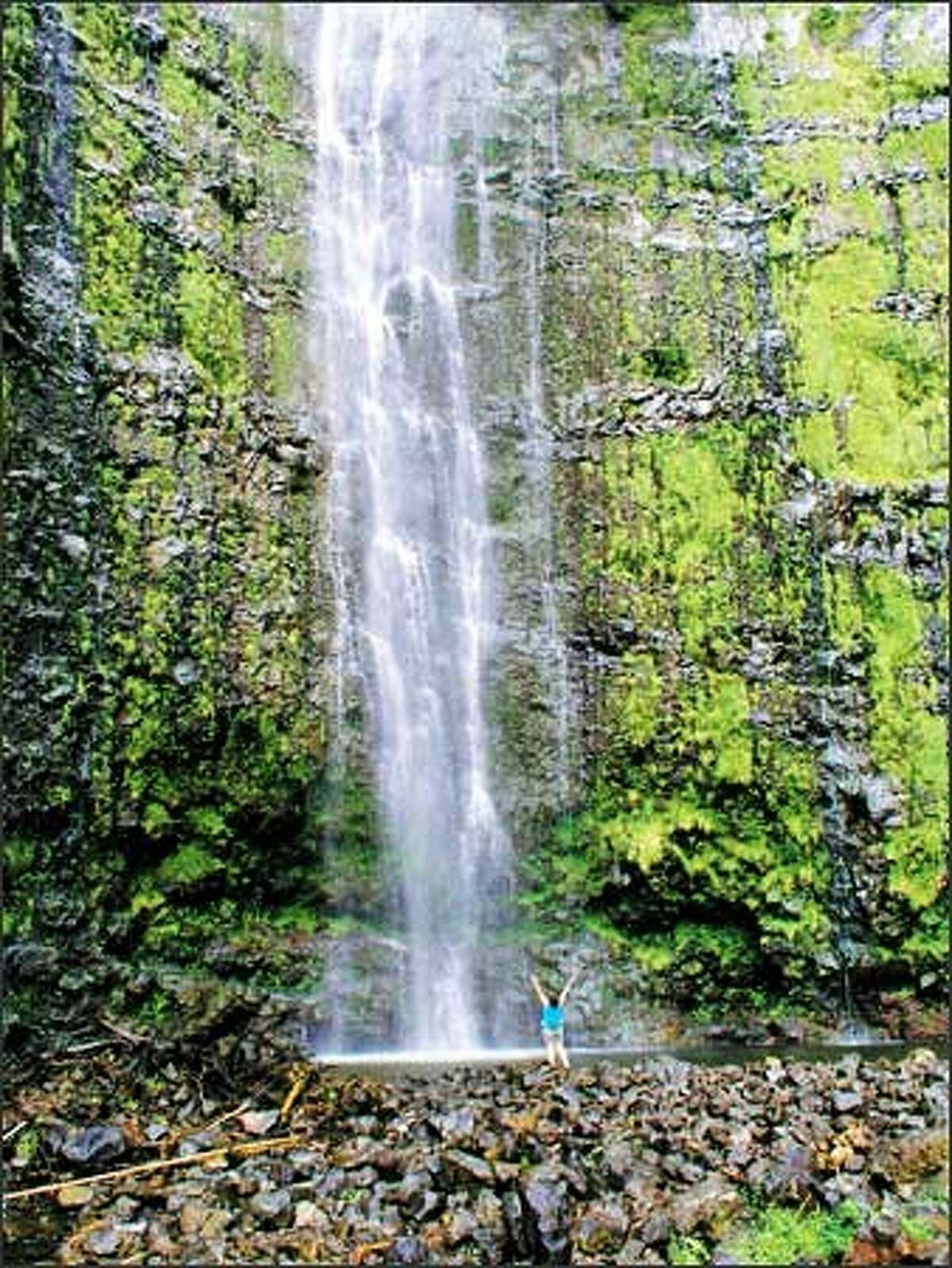 The reward at the end of the Pipiwai Trail is the 400-foot Waimoku Falls.