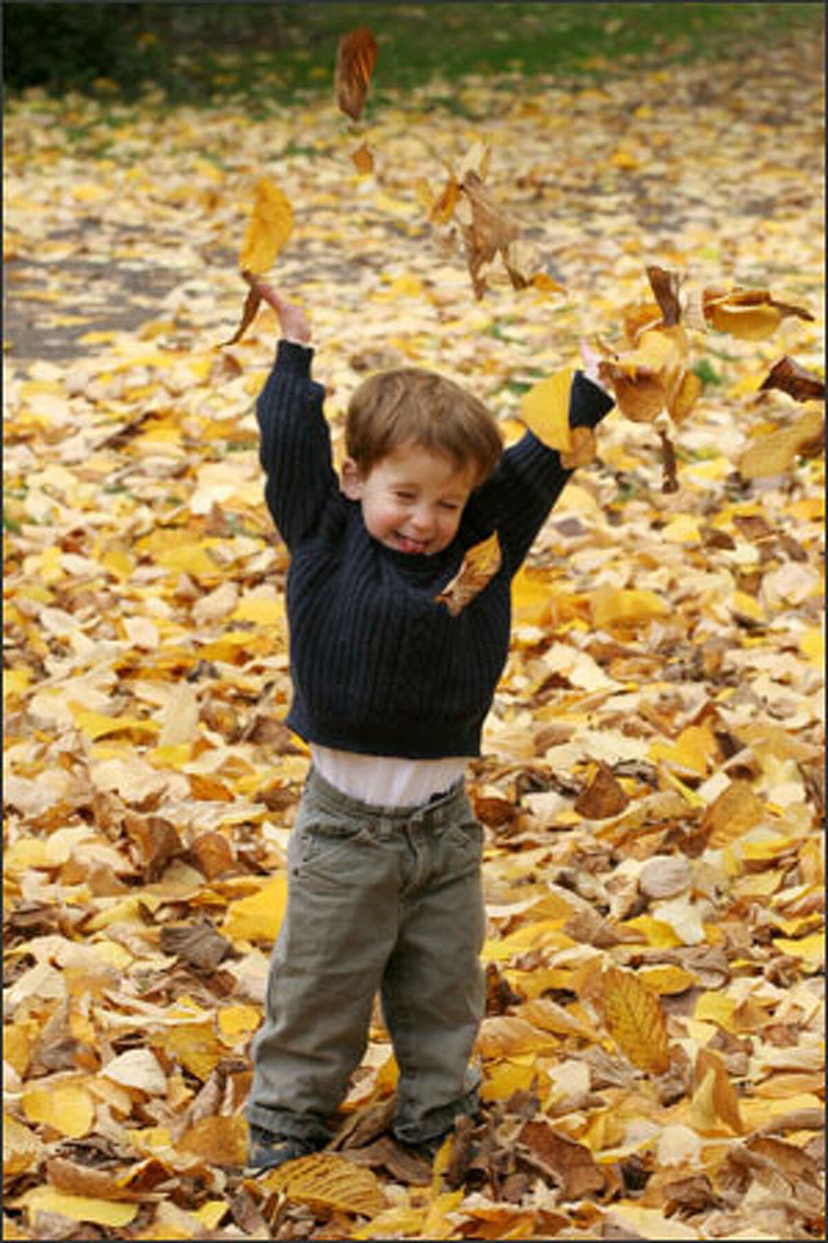 Two-year-old Owen Prengergast of Seattle enjoys a fall day at Lincoln Park in West Seattle on Monday.