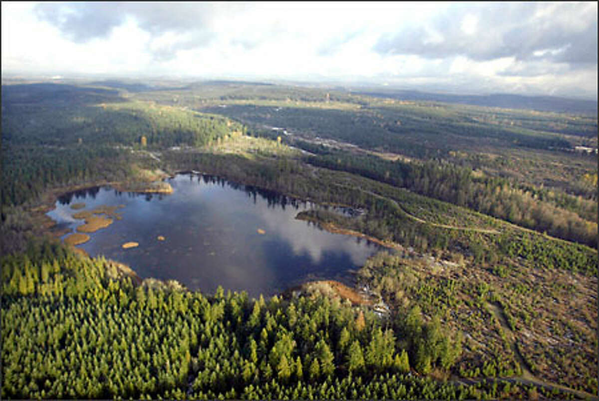 Trees surround Tule Lake, part of Weyerhaeuser's Forest Reserve program. The company is selling land in lots of at least 20 acres for $102,000 to $180,000. Buyers in the program can only build on 2 acres, but also have the option of receiving four hours of instruction on forestry practices. (Editor's Note: The original photo caption misstated the voluntary nature of the instruction.)