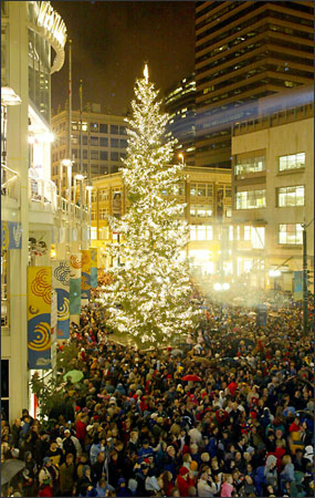Wind and rain lash the crowd, but a 60-foot Douglas fir is still the star of the show during the Westlake Center's 15th annual Christmas tree lighting last night. This year's tree came from the Olympic Peninsula and was decorated with 25,000 lights. It was one of the delights that drew shoppers to downtown Seattle yesterday.