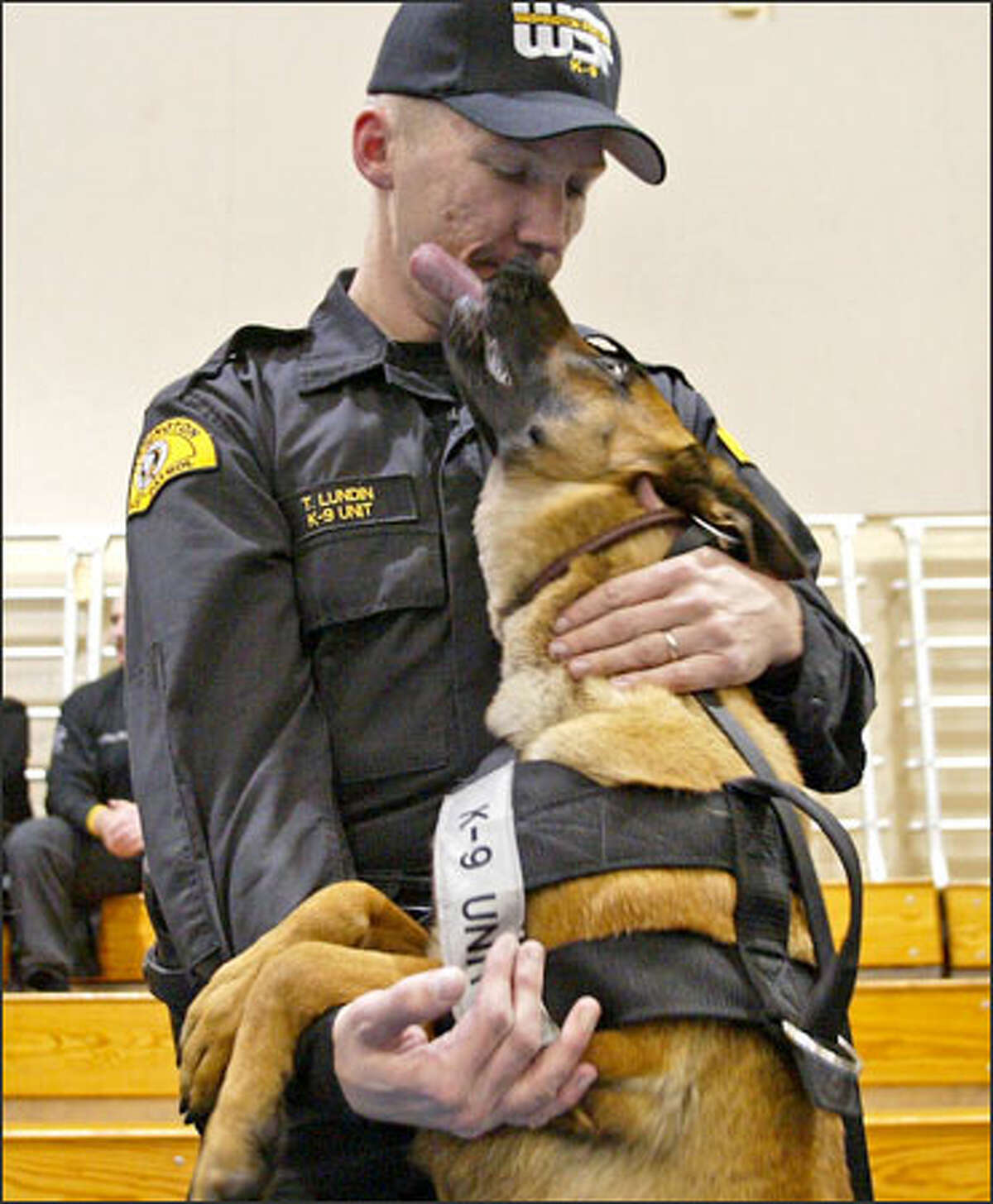 State Patrol Trooper Thomas Lundin gets a big, sloppy kiss from 2-year-old Penny, a Belgian Malinois. Penny is an explosive-detection dog. Twenty dogs with the patrol's Canine Unit graduated at the patrol's academy near Shelton on Tuesday. The dogs will help provide security for Washington State Ferries and in other locations throughout the state.