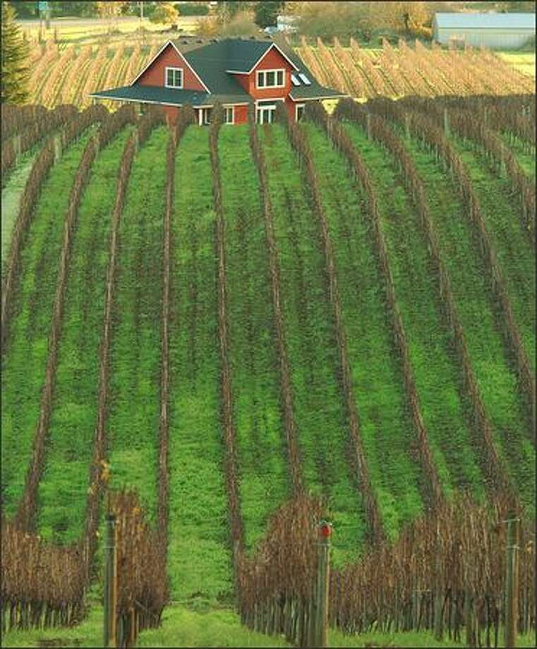 McMinnville is at the southwest corner of the prolific Yamhill County wine-growing region. The Sokol Blosser Winery vineyard is pictured. Photo: Jeff Larsen, Seattle Post-Intelligencer / Seattle Post-Intelligencer