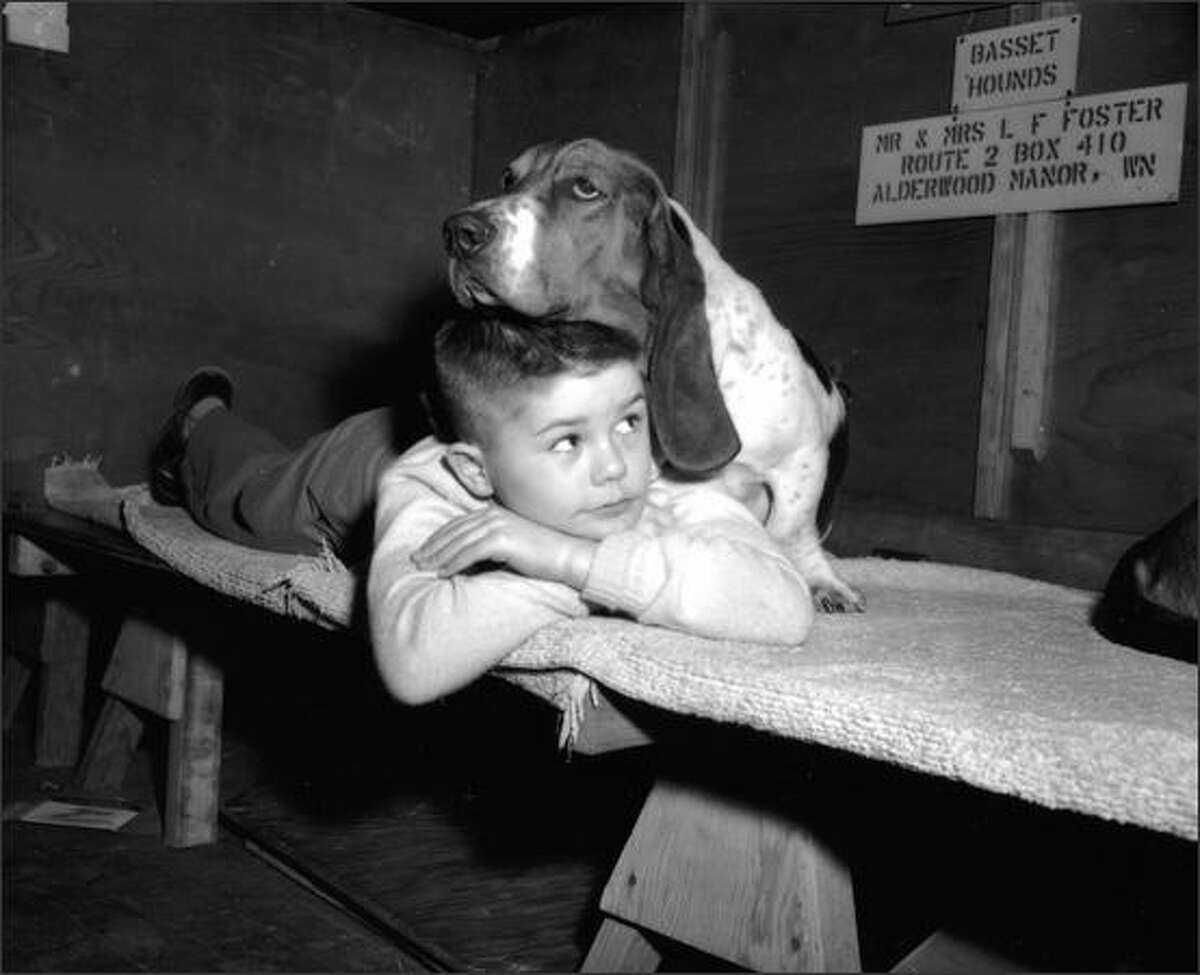Gregory Ward with a bassett hound at a Seattle dog show, 1955.