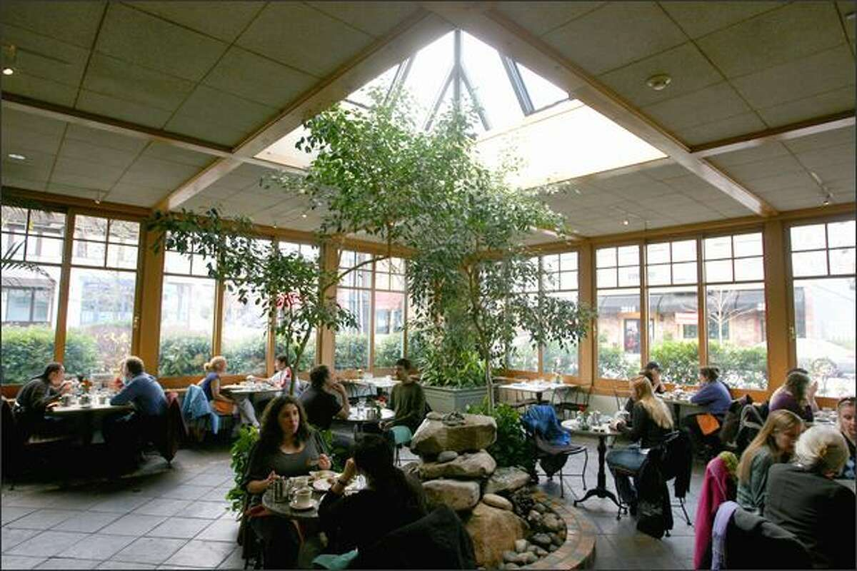 Transforming an outdoor patio into an indoor atrium at Cafe Flora expanded the seating capacity to more than 150. A fountain burbles in the ficus forest.