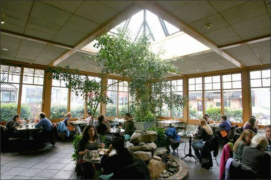 Transforming an outdoor patio into an indoor atrium at Cafe Flora expanded the seating capacity to more than 150. A fountain burbles in the ficus forest. Photo: Scott Eklund, Seattle Post-Intelligencer / Seattle Post-Intelligencer