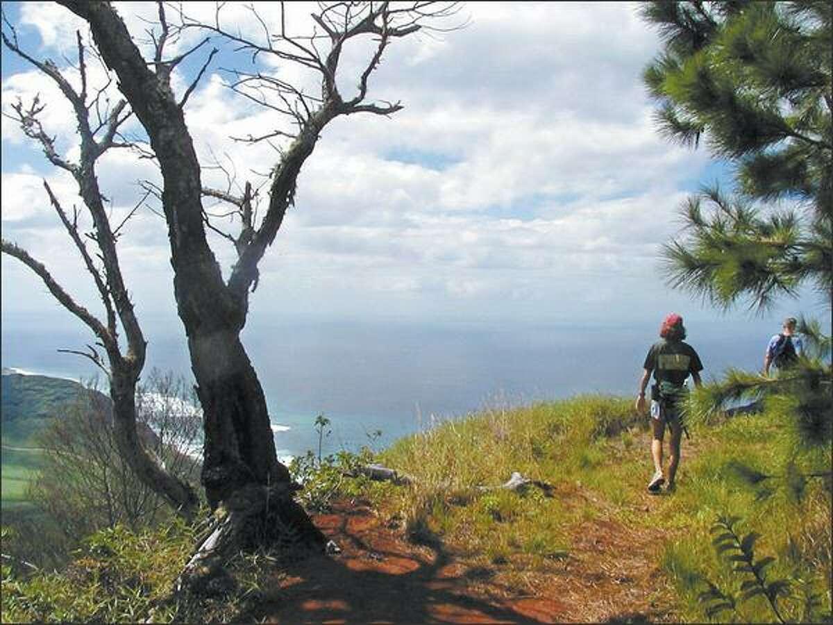 The Kuaokala Ridge Trail in western Oahu ascends 18 switchbacks and leads to choice ocean views. The route takes the hiker to spectacular Kuaokala Ridge. Yvonne Harris
