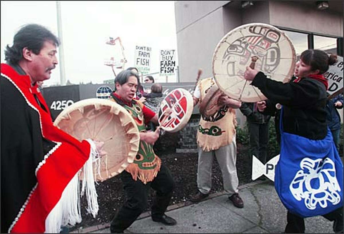 Haida drummers put a final beat on their drums as they finish a song during a demonstration yesterday against the salmon farming industry at North American Pan Fish headquarters in Ballard. About 100 representatives of U.S. and British Columbian fishing and conservation groups, along with Alaska natives and Northwest tribal members, participated in the protest, which continued with a march to a nearby Fred Meyer store. Opponents of salmon farms say they hurt sales of wild salmon and threaten their existence, and damage the environment.