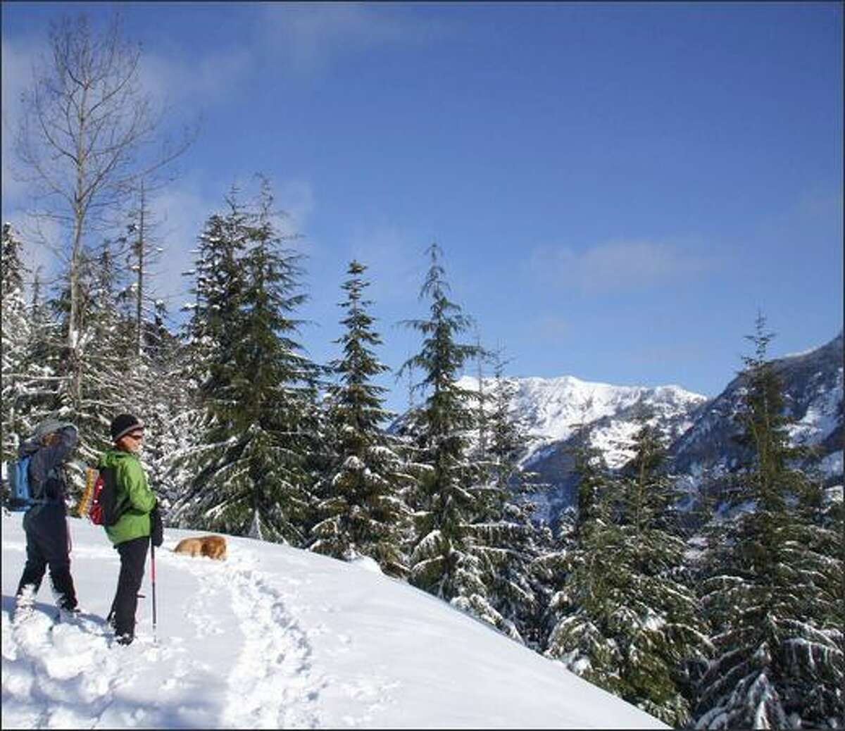 Snowshoers and their canine pal pause for a view break at a switchback on the Kendall Peak Lakes Road.