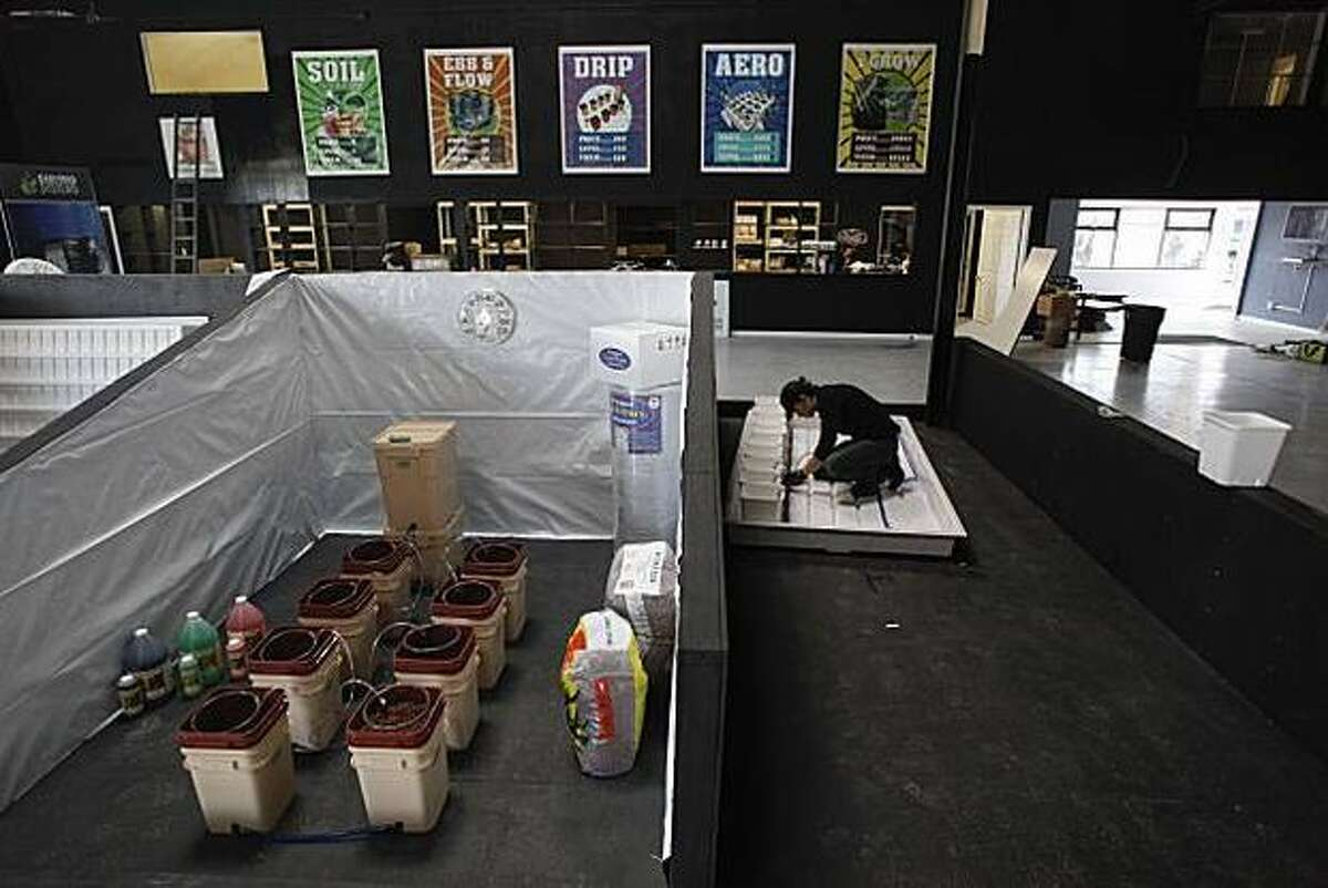 Zeta Ceti constructs a display at the iGrow warehouse in Oakland, a one-stop shop for medicinal marijuana cultivation.