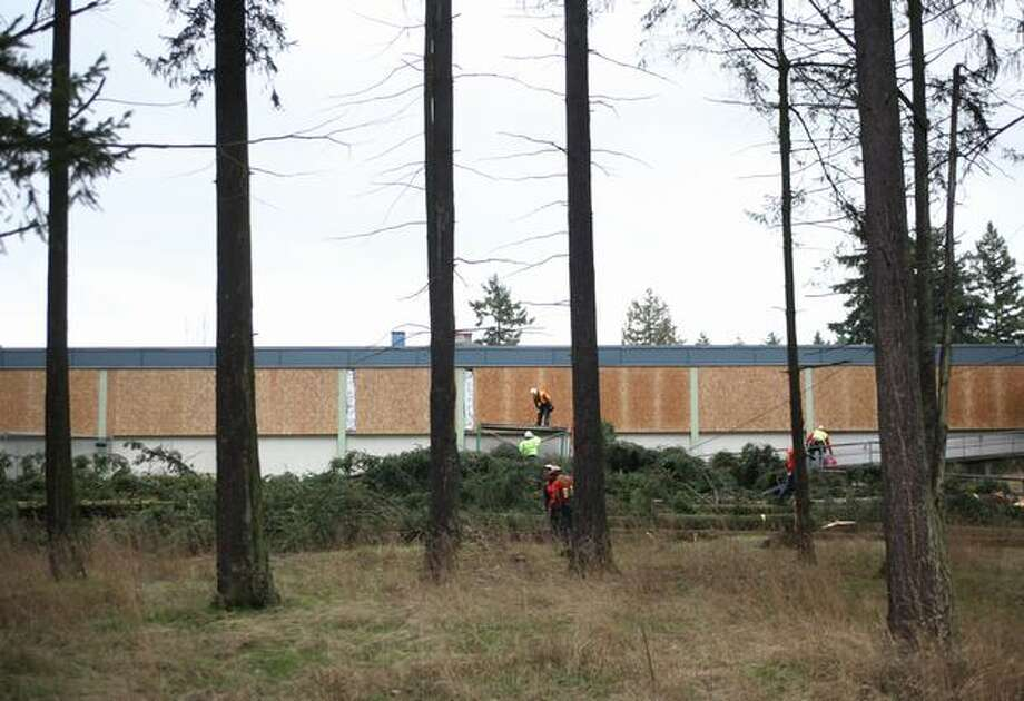 Trees are cut down,. making way for future construction on the campus of Ingraham High School on Friday, Jan. 28, 2011 in Seattle. Neighbors led an unsuccessful effort to save the trees. Photo: Joshua Trujillo, Seattlepi.com / seattlepi.com