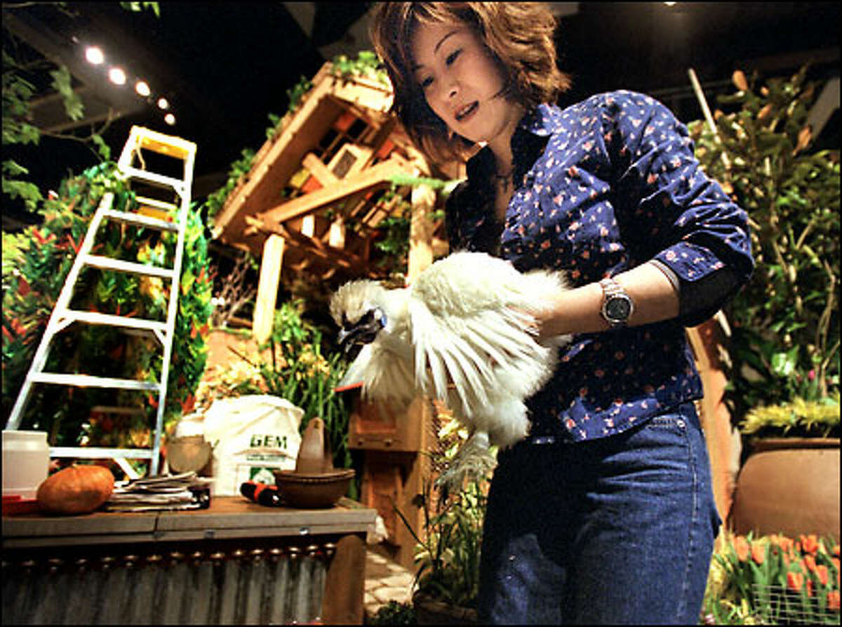 Masako Ota, a senior at the Department of Landscape and Architecture at the University of Washington, uses an Ukokkei chicken, valued for medicinal purposes, in a cultural display. Titled