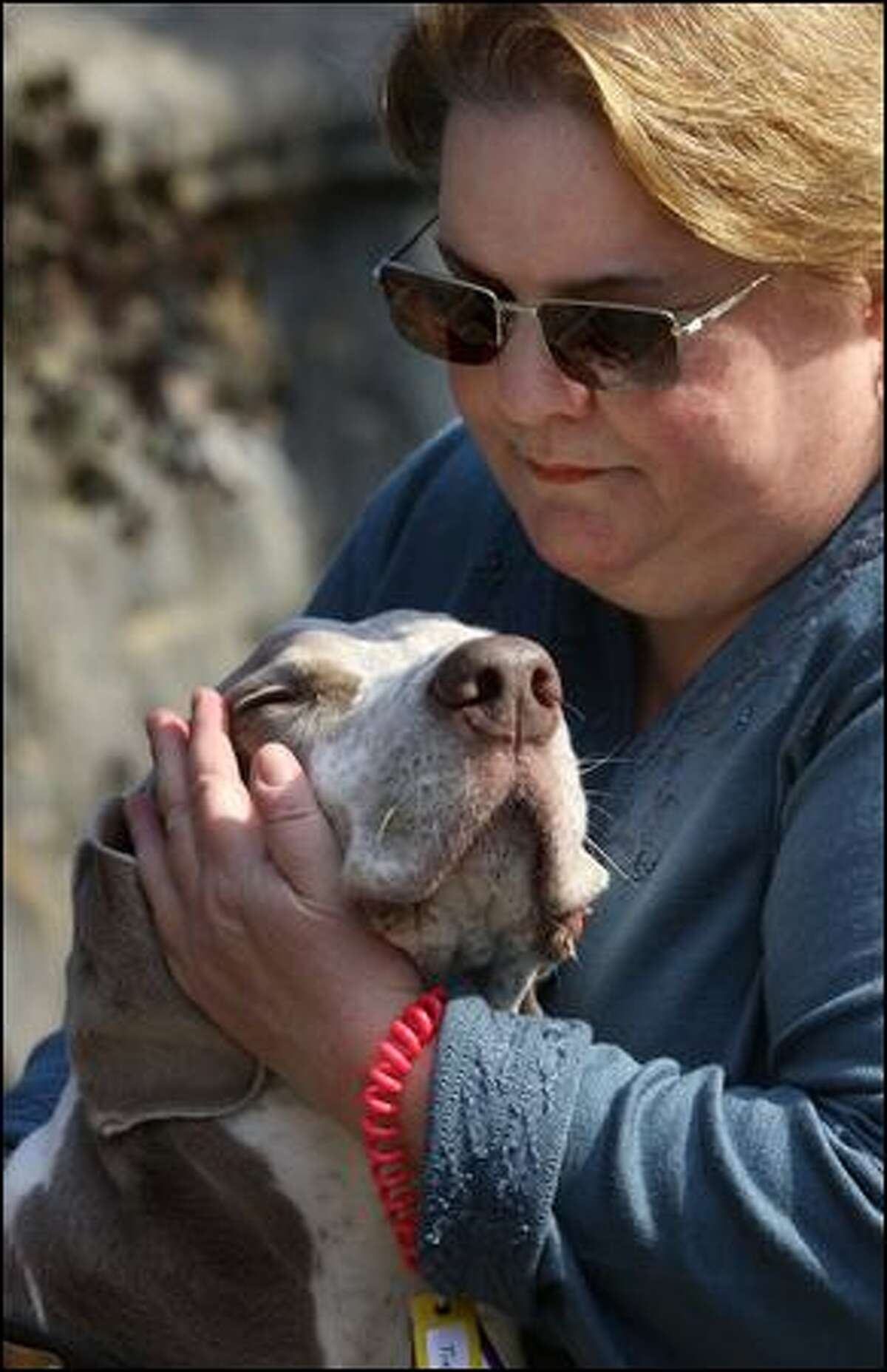 Kathy McAvoy-Rogalski hugs Gunner, a Weimaraner she cares for through her Fetch pet sitting franchise.