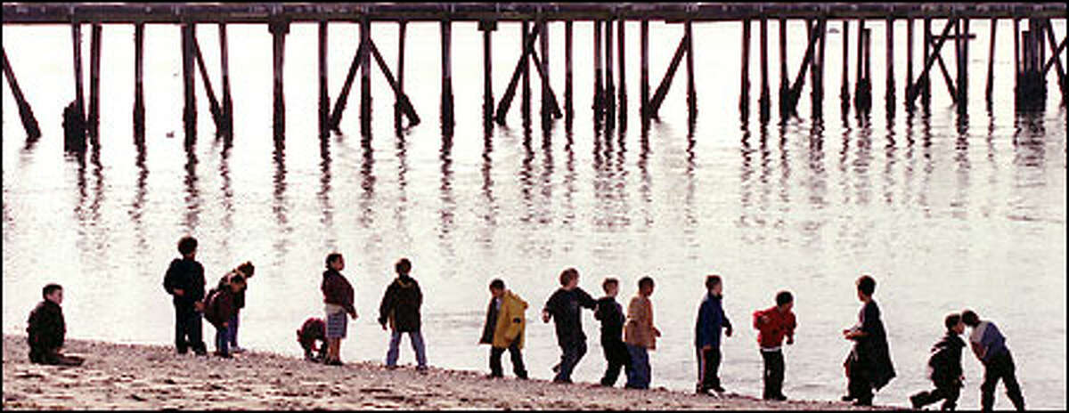 Youngsters from the Grow With Us day care school in Edmonds enjoy a field trip to the beach at Edmonds Marina yesterday. The children tried their hand at skipping rocks and took in the sunshine on the 50-degree day.