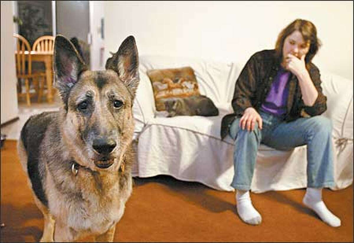 Allison, a German shepherd, barked at an appraiser. For that, and her breed, Wiccan York-Patten's homeowner insurance was canceled.