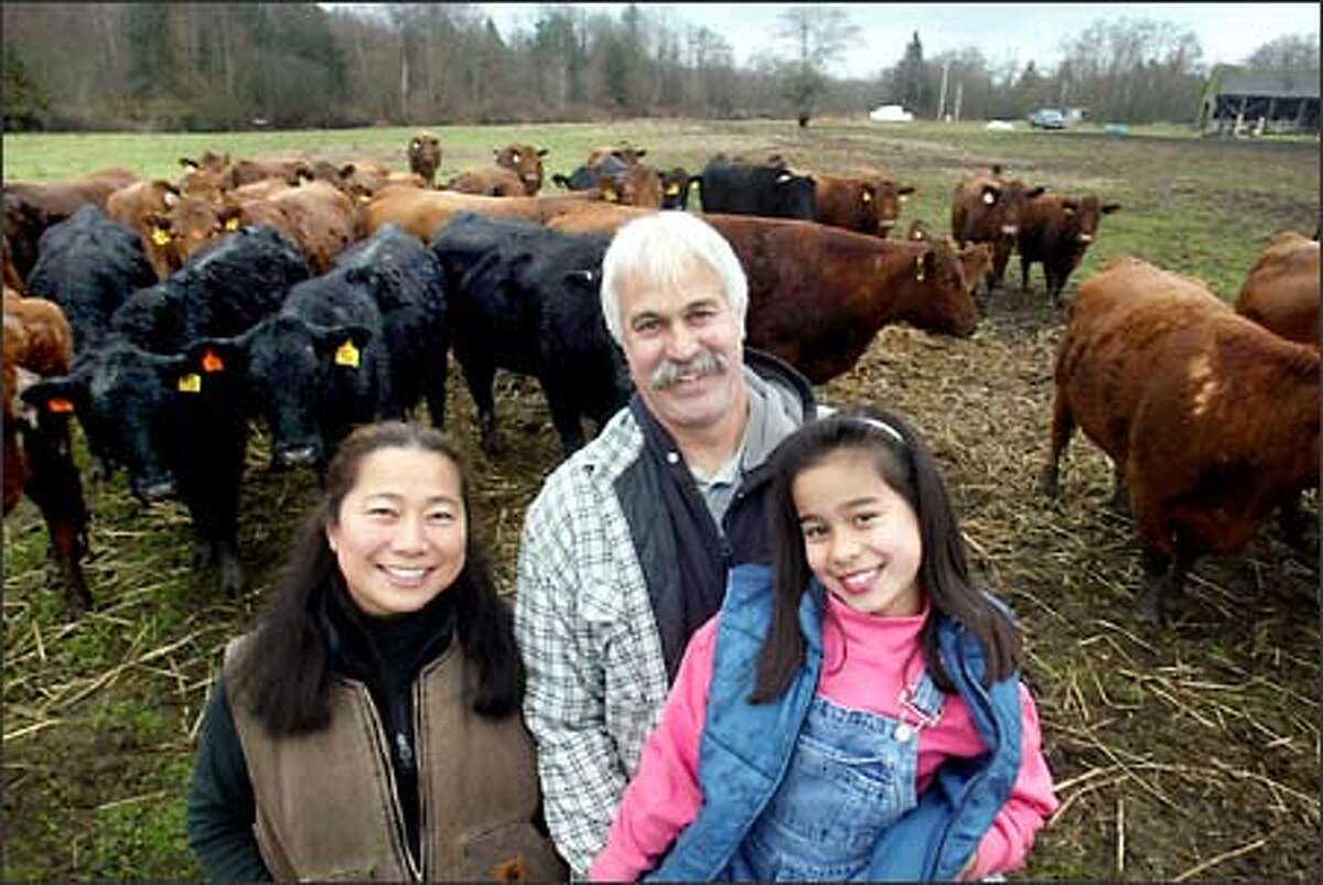 The Vojkoviches share the spotlight with some of their organically raised Red Angus and Black Angus cows.