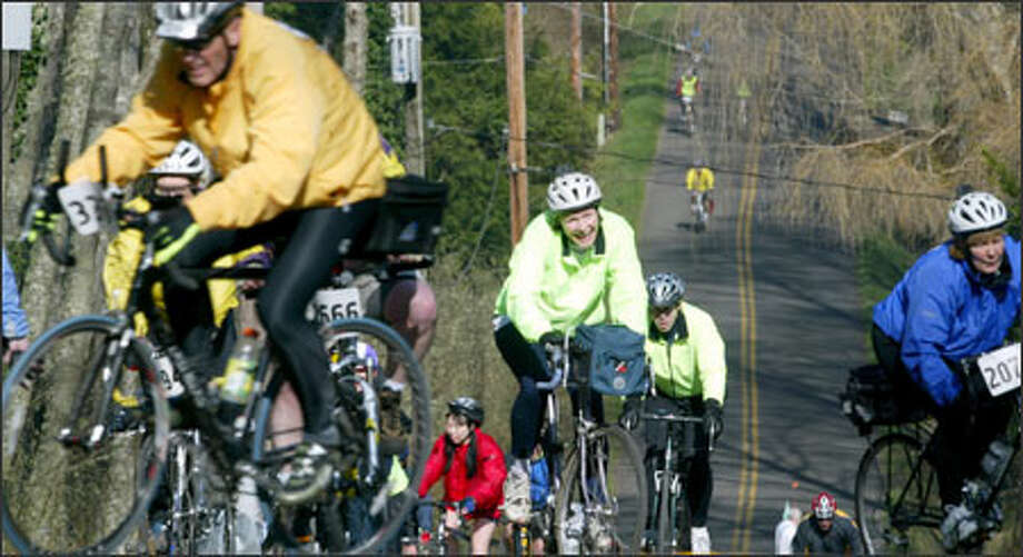Bicyclists labor up Peterson Hill about 12 1/2 miles into Sunday's 33-mile Chilly Hilly ride on Bainbridge Island, sponsored by the Cascade Bicycle Club. Photo: Karen Ducey, Seattle Post-Intelligencer / Seattle Post-Intelligencer