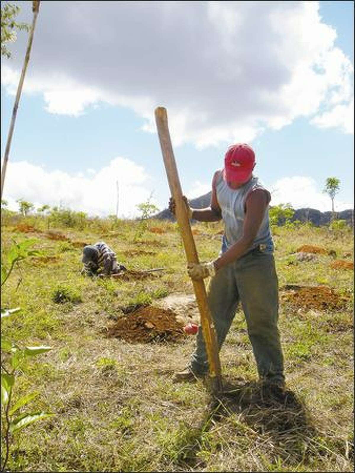 Edgard Castro digs a hole to plant passion fruit vines on a new farm in near Matagalpa, Nicaragua. A Seattle non-profit group called Agros International is helping poor families buy the land, and make it productive.