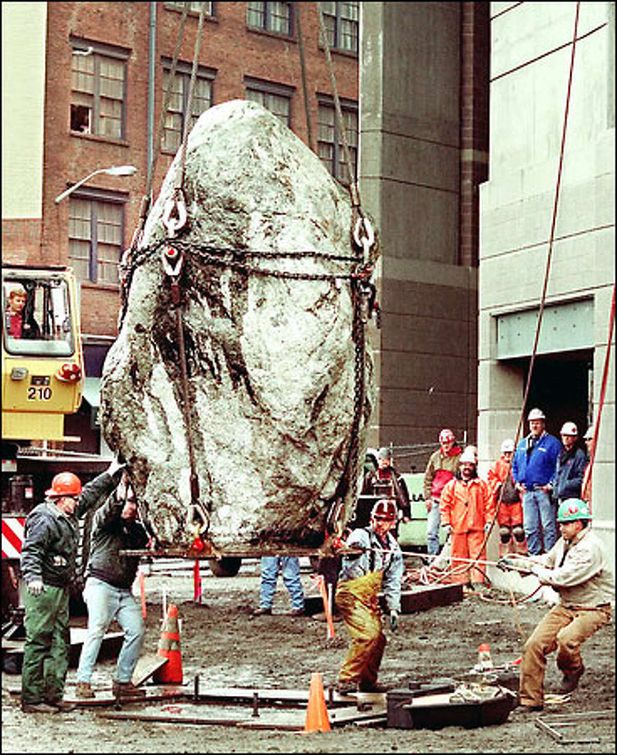 A granite boulder that weighs considerably more than 16 tons is lowered by crane to the west plaza of the new Washington State Football/Soccer Stadium. The 36-ton boulder is half of