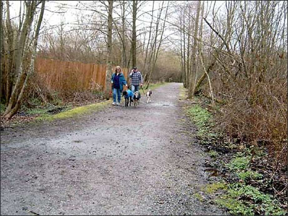 Darrell and Susan Reimer walk their greyhounds at Mercer Slough Nature Park. The wetlands park is in the midst of surburban civilization, yet it has more than five miles of peaceful walking trails. Photo: Karen Sykes, Special To The Post-Intelligencer / Special to the Post-Intelligencer