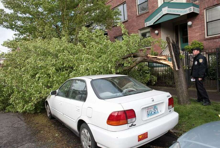 A downed tree rests across parked cars on Harvard Avenue East in Seattle's Capitol Hill neighborhood during a strong windstorm on Friday April 2, 2010. Power was knocked out to thousands of homes and businesses across the region because of the high winds. Photo: Joshua Trujillo, Seattlepi.com / seattlepi.com