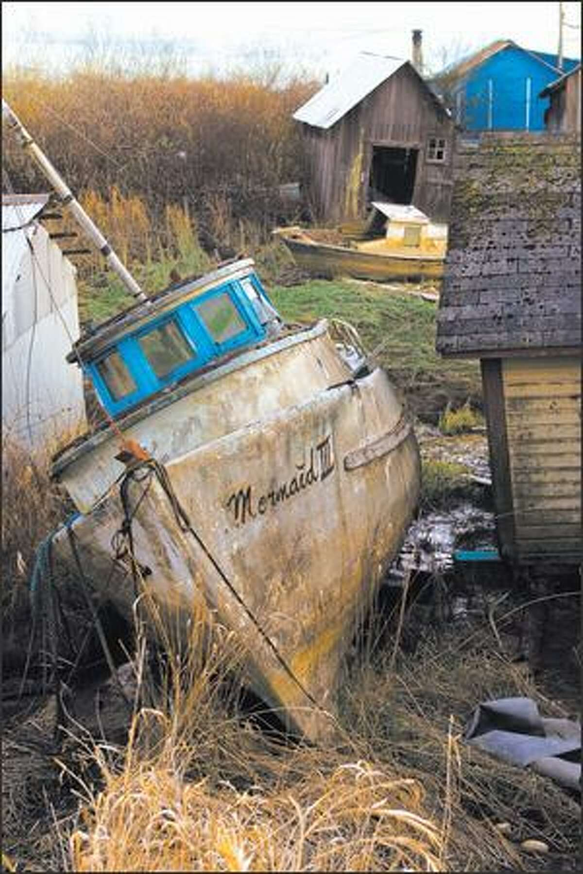 A derelict fishing boat is a timeless reminder of Steveston's maritime heritage.