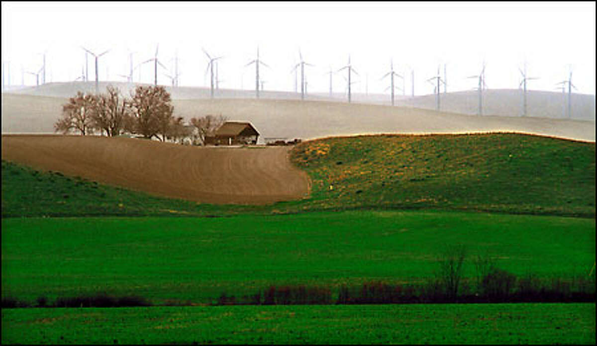 Old meets new on the rolling, windswept hills near Touchet in Eastern Washington as wind turbines spin next to greening wheat fields.