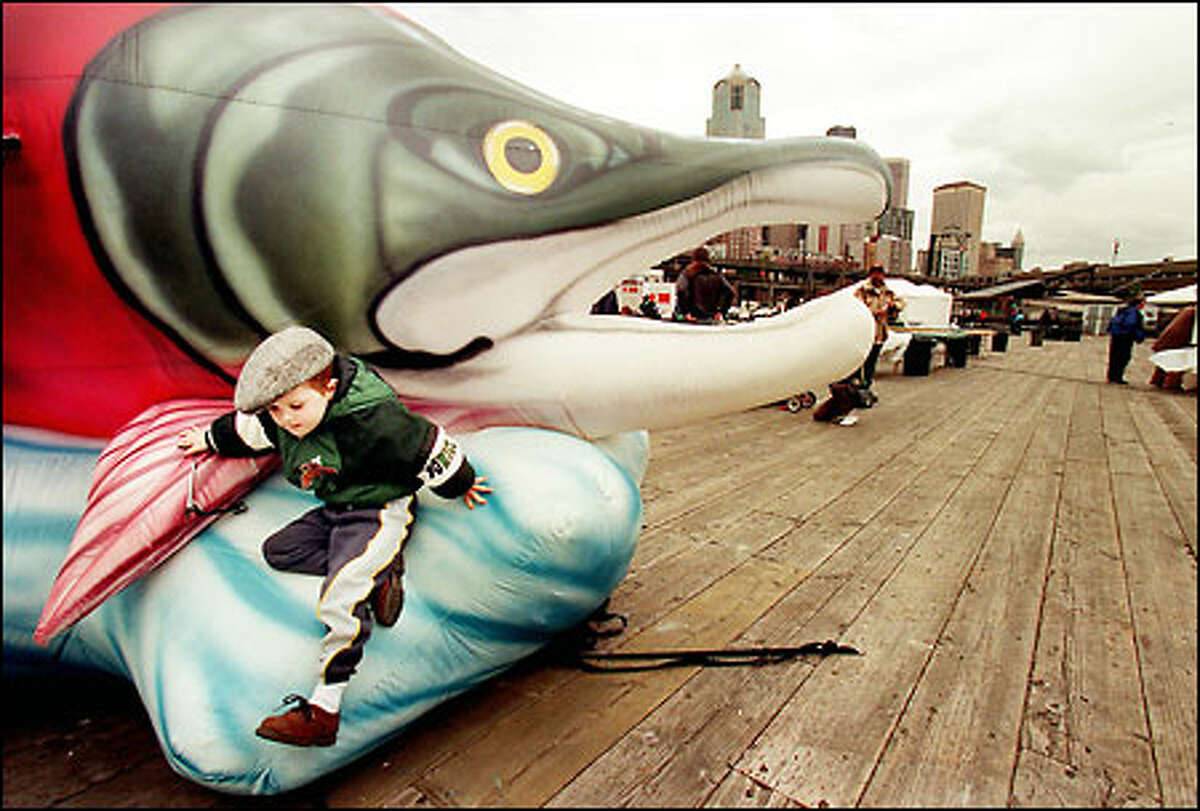 Seth Schlindler, 4, jumps down to the deck of Pier 62/63 after trying his best to climb a giant inflatable salmon at the Earth Day celelbration on the Seattle waterfront. Seth was at yesterday's event with grandfather Rick Schindler and Shirley Moyer. The inflatable salmon was part of a display by the Save Our Wild Salmon organization. Other Earth Day displays included the latest in alternative vehicle technology; the event also featured free live music.