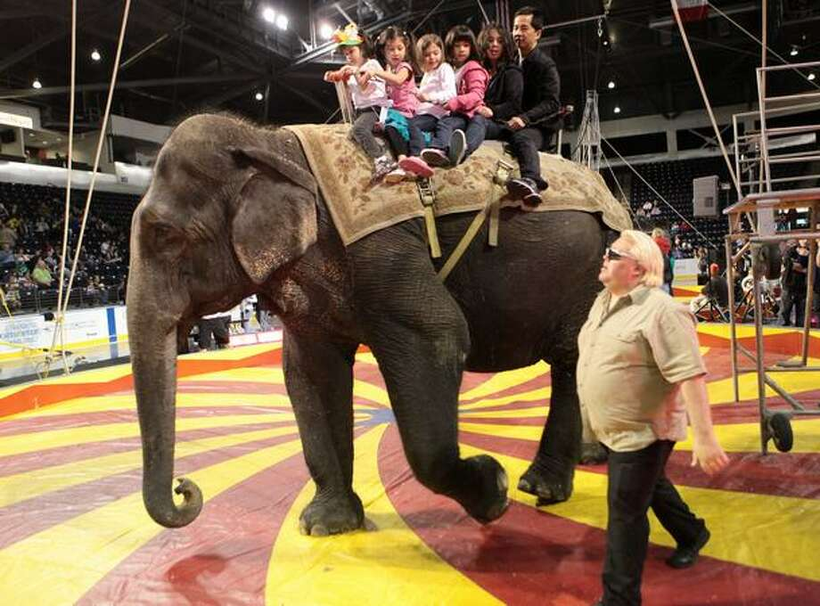 Visitors ride on the back of an elephant during a performance by the Nile Shrine Circus at the ShoWare Center in Kent. The circus recently wrapped up a tour of locations around the Puget Sound. Photo: Joshua Trujillo, Seattlepi.com / seattlepi.com