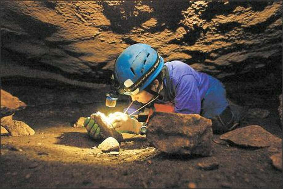 Jean Krejca, a biologist with Zara Environmental, a consulting company, studies rare creatures in humid caves such as Tooth Cave, near Austin, Texas. Numerous cave species are already extinct, she said, the result largely of development. Photo: Gilbert W. Arias, Seattle Post-Intelligencer / Seattle Post-Intelligencer