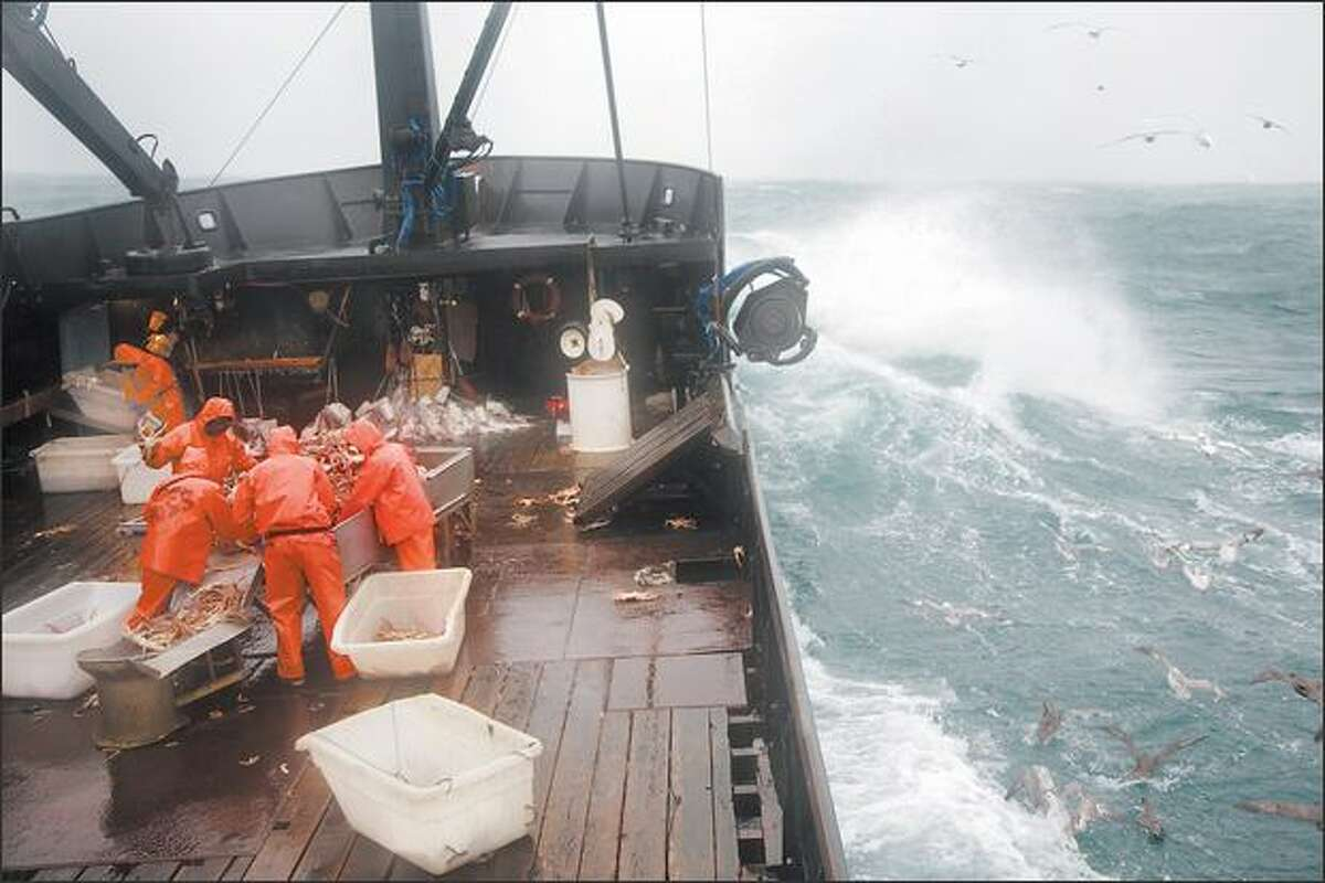 The Time Bandit's crew members are at work on the deck. Three of the five Hillstrand brothers make up the six-man crew.