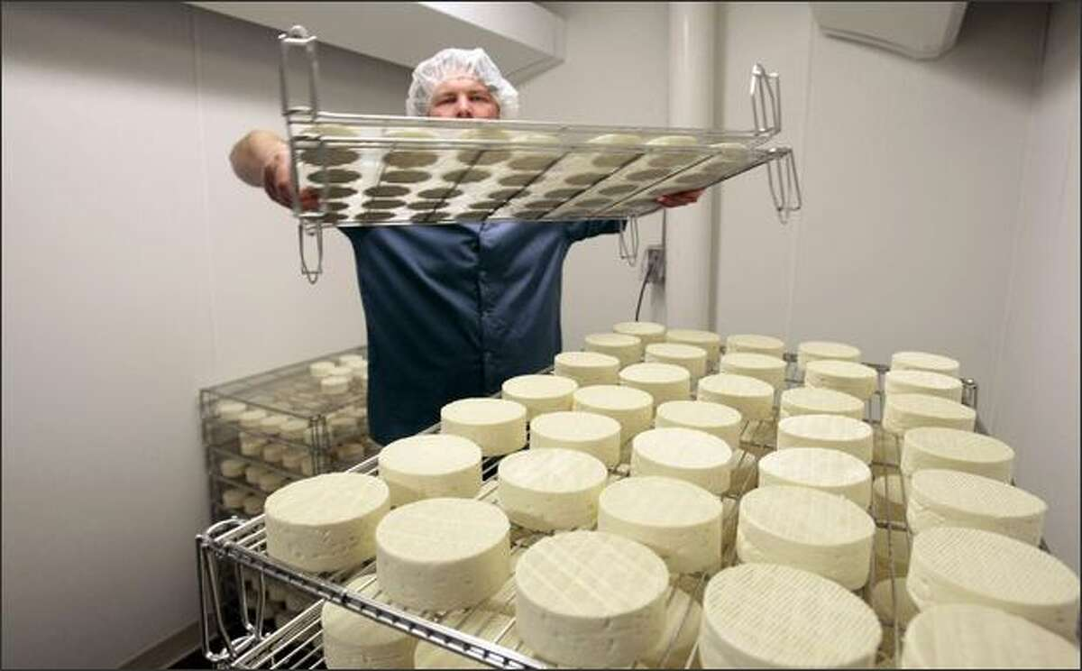 Co-owner Matt Day flips the Camembert-like Cirrus. The soft-ripened cheeses are flipped daily until they develop a bloomy rind, and are then packaged. They will age for another week or two before being sent to customers.