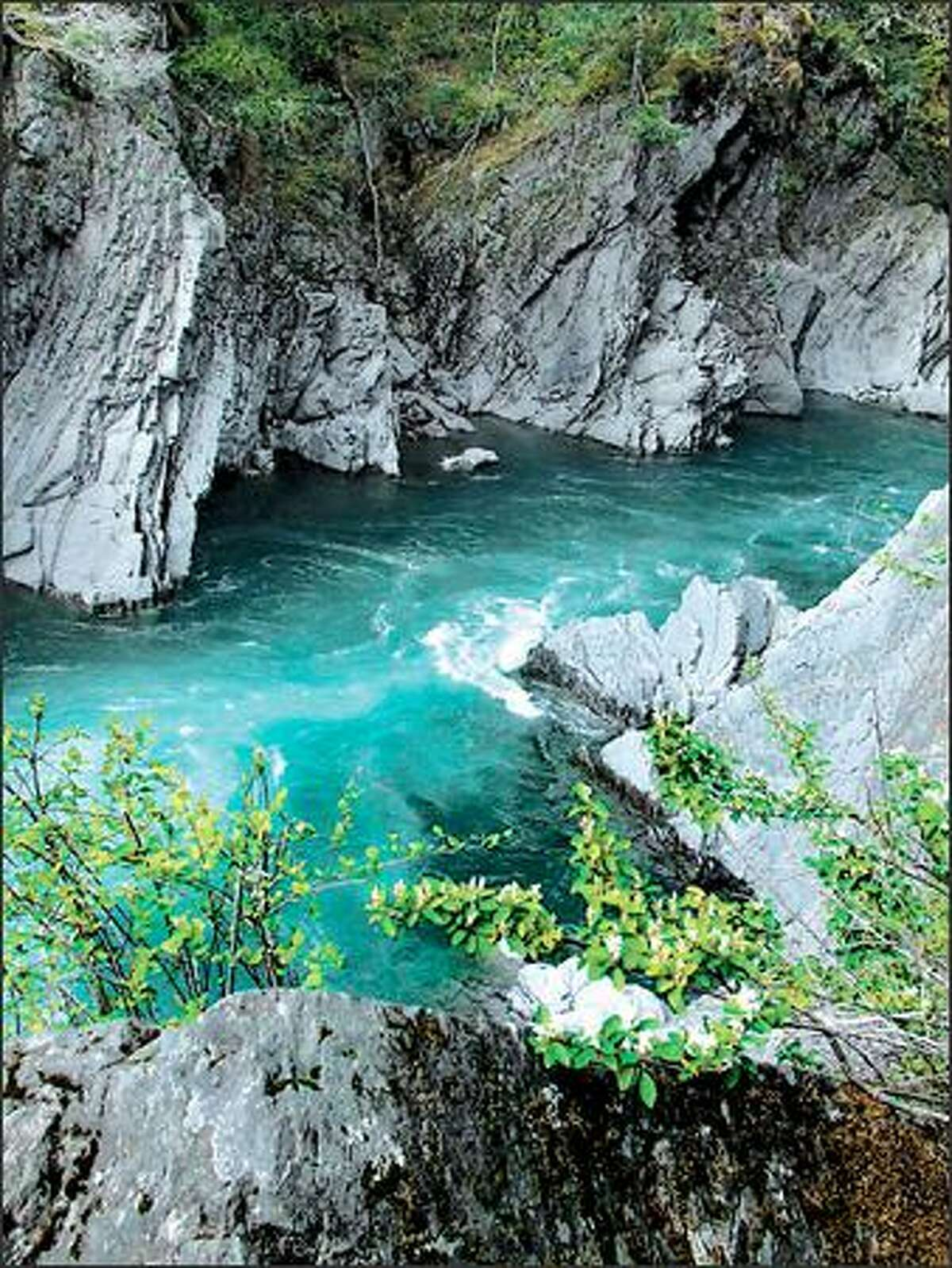 At Goblin Gates, the Elwha River flows beside a cliff and abruptly fills a deep basin where the water whirls furiously.