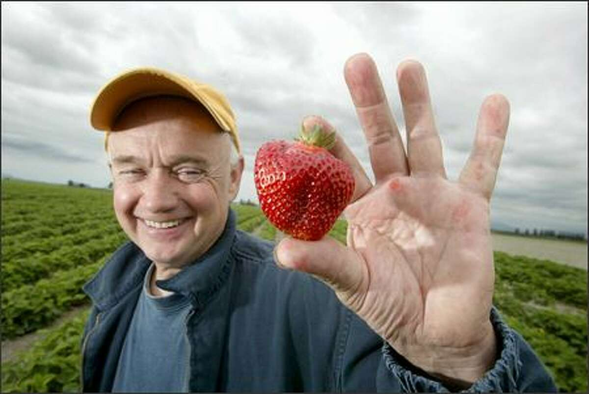 Don Kruse, owner of the Skagit Sun farm, said this year's harvest will be his earliest in his 25 years of farming.