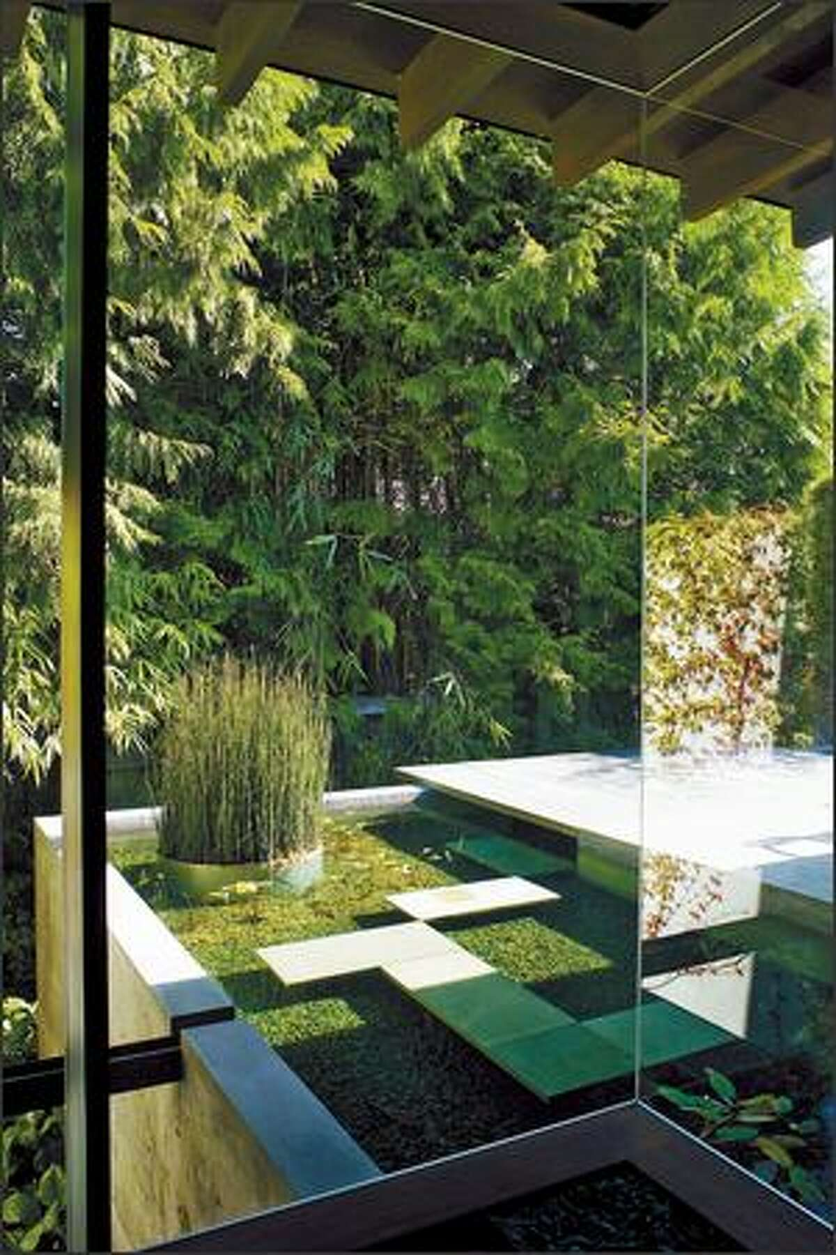 A wall of glass showcases a line of evergreens that act as a figurative wall for the interior of the house.