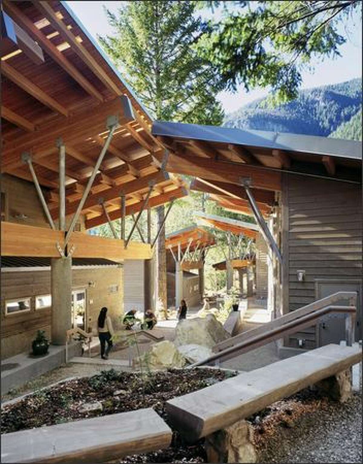 The North Cascades Environmental Learning Center rooflines thrust into the air, like tree canopies jostling for scraps of sky. (HKP ARCHITECTS PHOTOS)